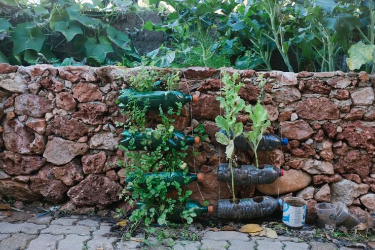 satori garden